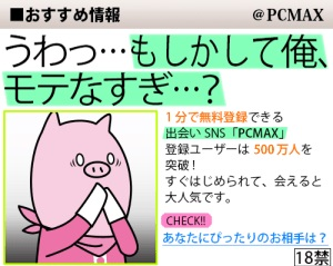 PCMAX公式